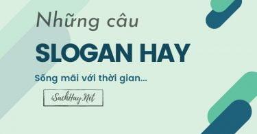 slogan hay